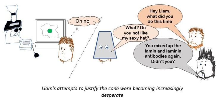 laminin joke #2