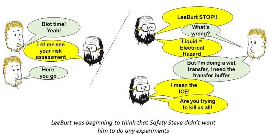 safety stevejpg