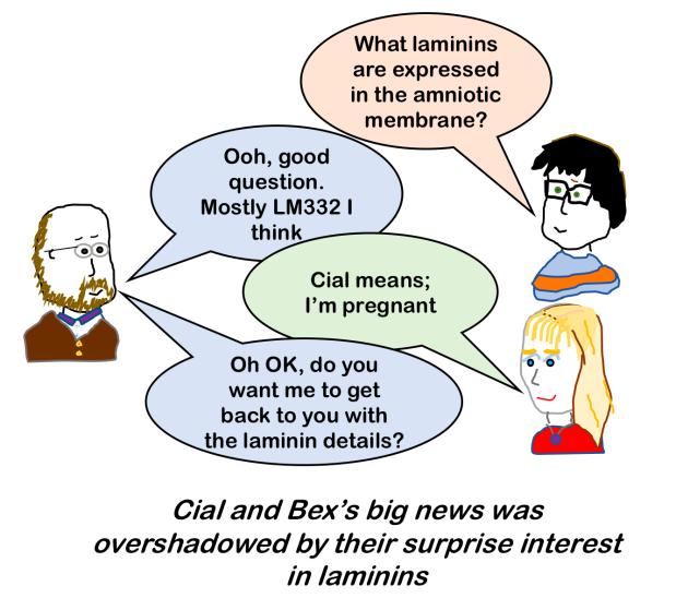 Life in the Laminin Lab - big news
