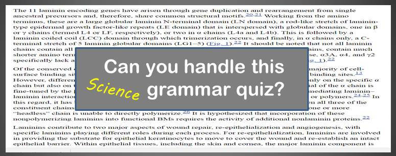 quiz phrases grammar science r