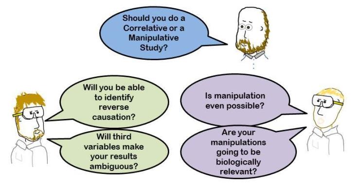 Correlative or Manipulative