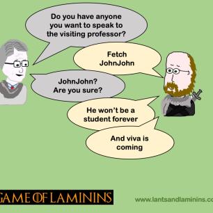Game of Laminins - Viva